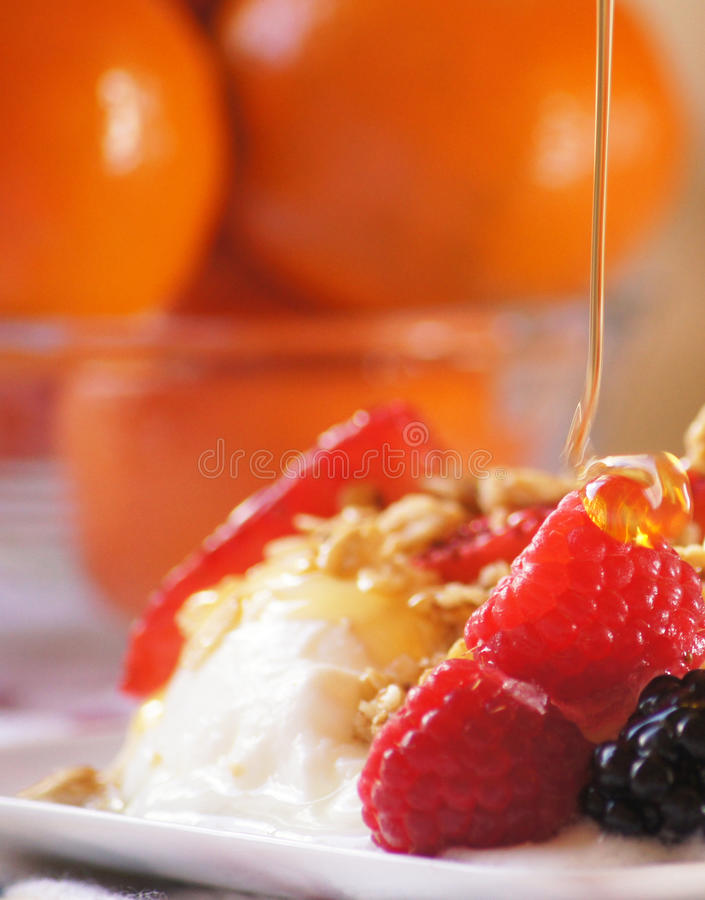 Honey Drizzle on Fruit and Yogurt royalty free stock photos