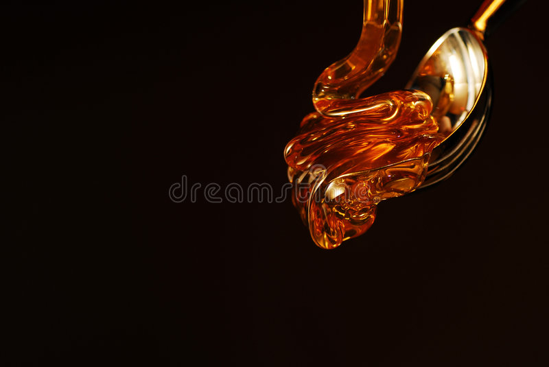 Honey drop stock image