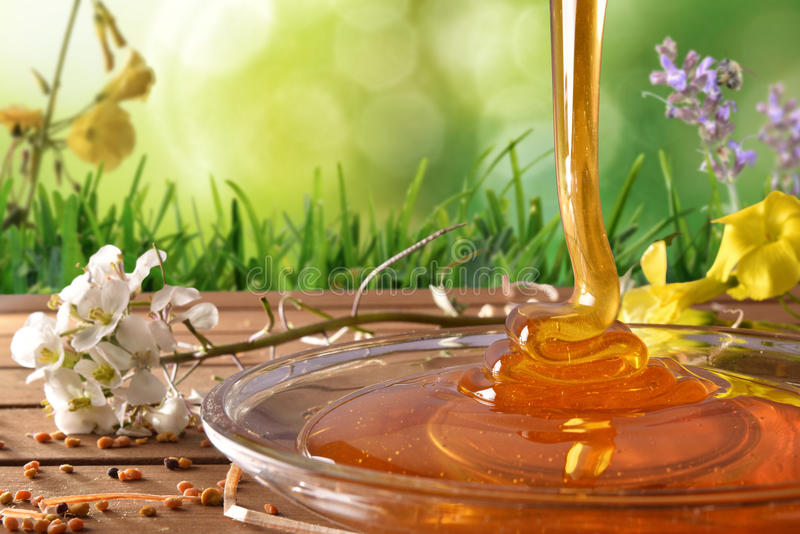Honey falling into a glass dish with green nature background. Honey falling into a glass dish on a wooden table with flowers and bee pollen. Green nature royalty free stock photos