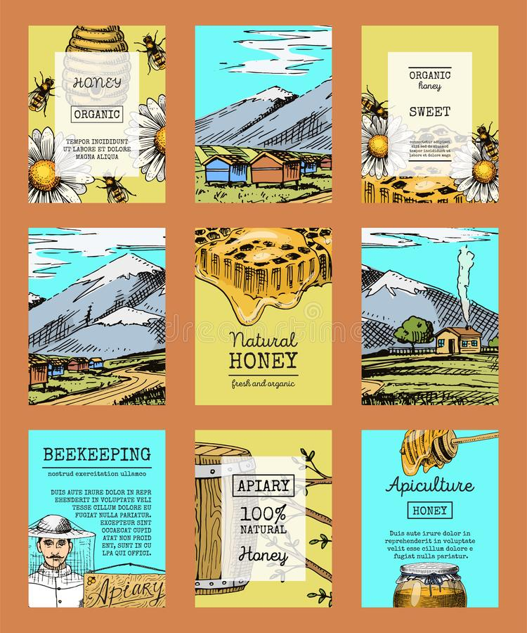 Honey farm cards waxing bee and beehive flyer. Poster organic honey and apiary, beehive and chamomile dessert nutrition royalty free illustration
