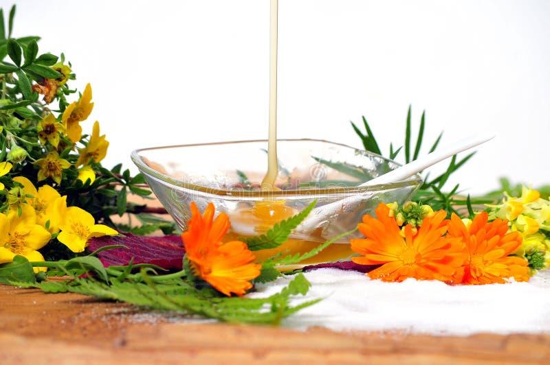 Honey Flower Spa royalty-vrije stock afbeeldingen