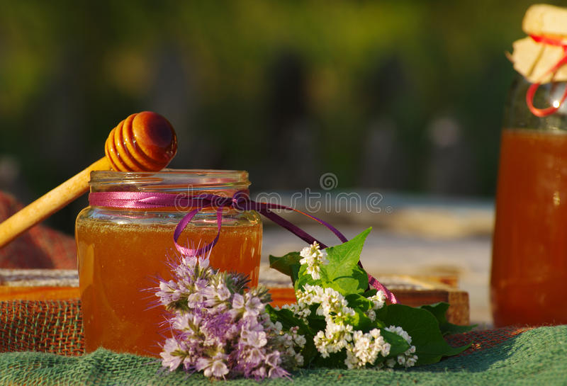 Honey in a glass jars and bee honeycombs with flowers melliferous herbs. Honey with flowers stock photo