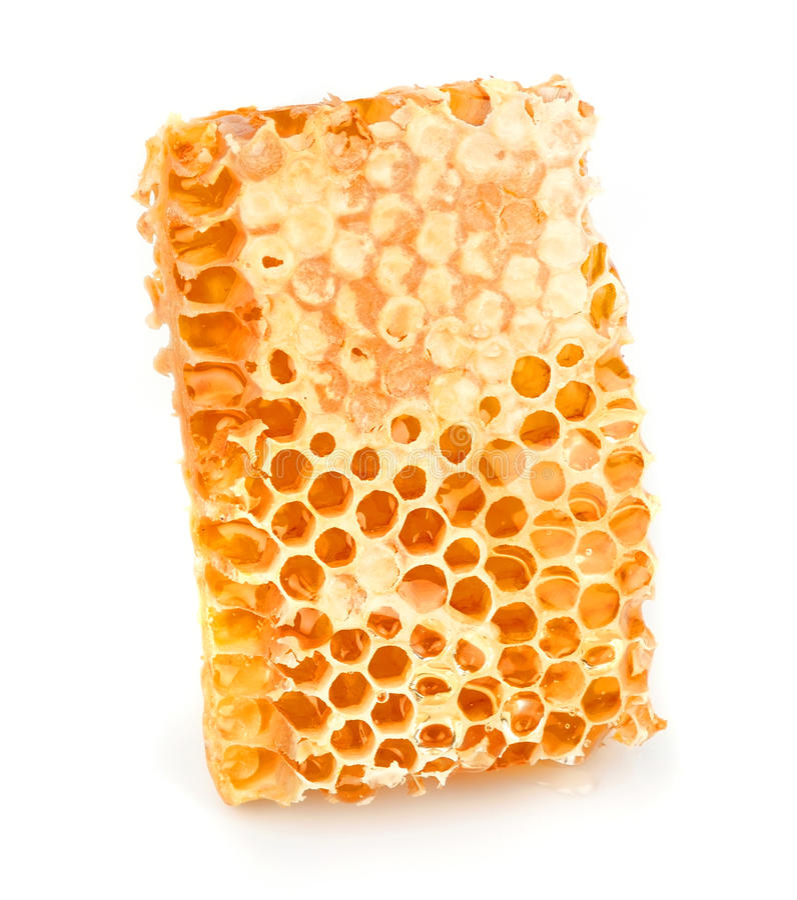 Free Honey Honeycombs Royalty Free Stock Photos - 28535068