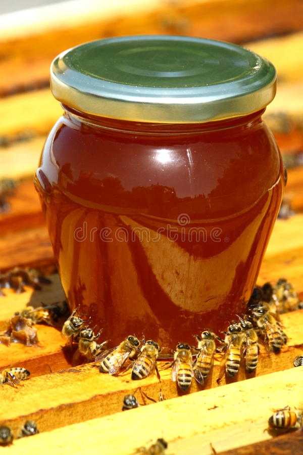 Free Honey Jar Stock Images - 15929754
