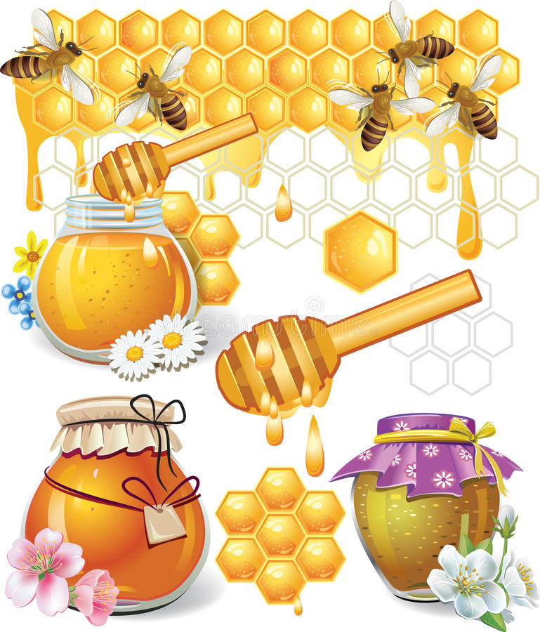 Honey. In the jar and in the cells