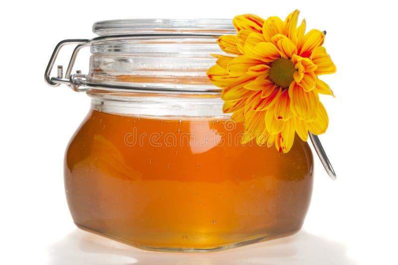 Download Honey jar, isolated stock image. Image of orange, food - 6517151