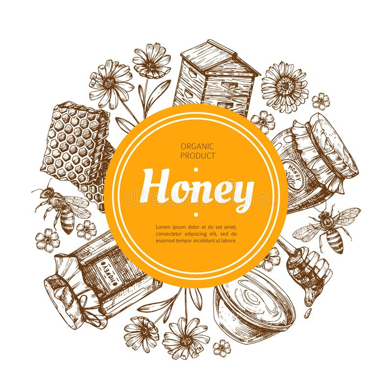 Honey label. Natural farm honey badge with bee and honeycomb. Vintage hand drawn vector illustration stock illustration