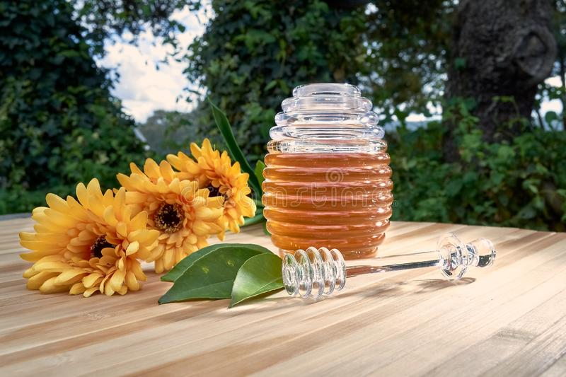 Honey pot on bamboo wood. With plastic daisies and lemons cut in half in the middle of the field sweet honeycomb dipper natural healthy stick delicious nature royalty free stock image