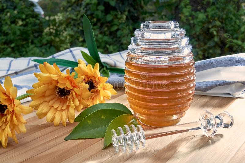 Honey pot on bamboo wood. With plastic daisies and lemons cut in half in the middle of the field sweet honeycomb dipper natural healthy stick delicious nature royalty free stock photos
