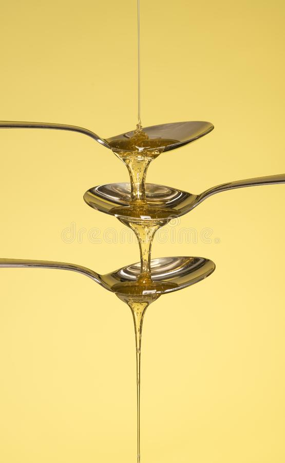Honey pouring over three spoons stock photography