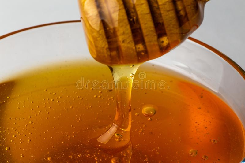 Honey pouring from wooden honey dripper, macro photo. Close up royalty free stock photos