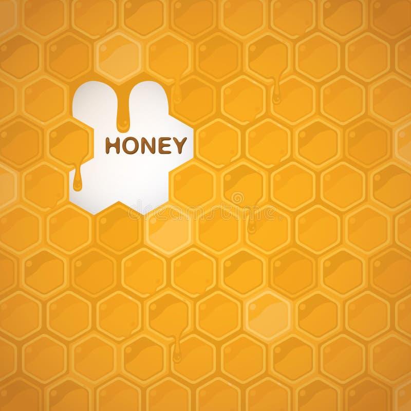 Honey`s background vector illustration