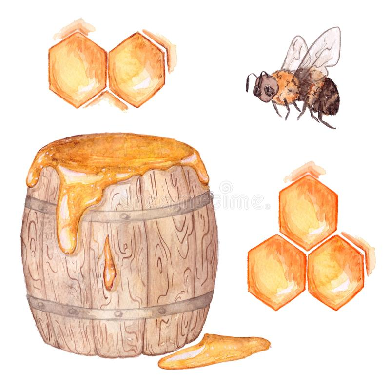 Honey set: a barrel of honey, bee, honeycomb. Watercolor painting stock photography