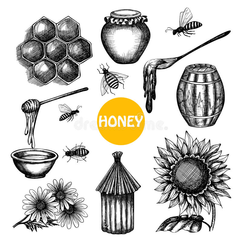 Honey set black hand drawn doodle. Honey production black icons set with beehive honeycombs cells and flying bees doodle abstract isolated vector illustration stock illustration