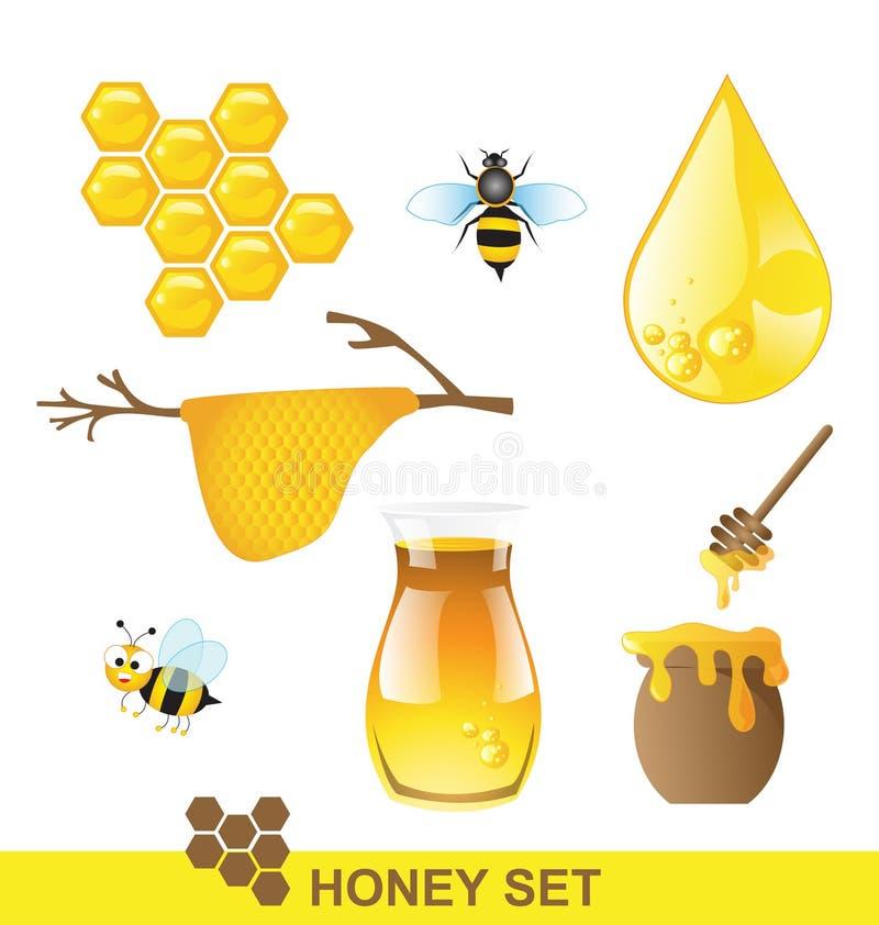Honey set Vector vector illustration