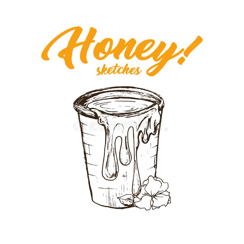Honey Sketches Bucket, conception de produits de Honey Hand Drawn Superfood Organic, illustration de vecteur illustration de vecteur