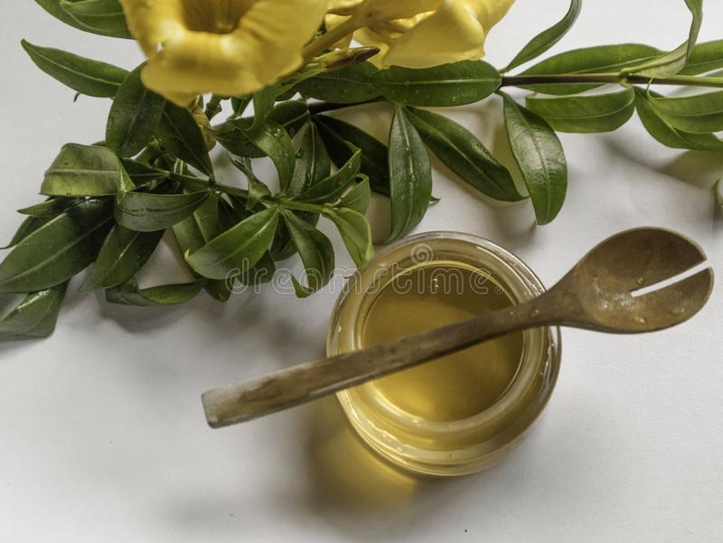 Honey is an skincare natural remedie stock photography