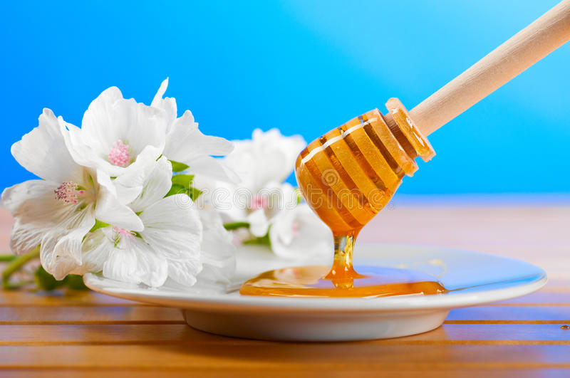 Download Honey spoon stock image. Image of life, golden, background - 21373353