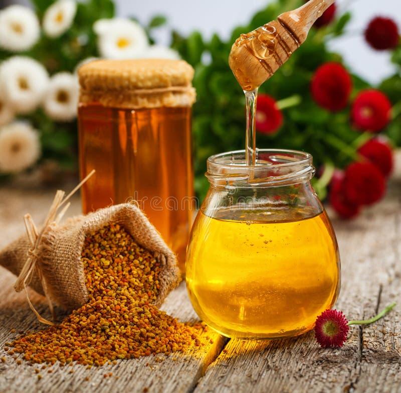 Download Honey stock image. Image of honey, pollen, flower, nature - 31477371
