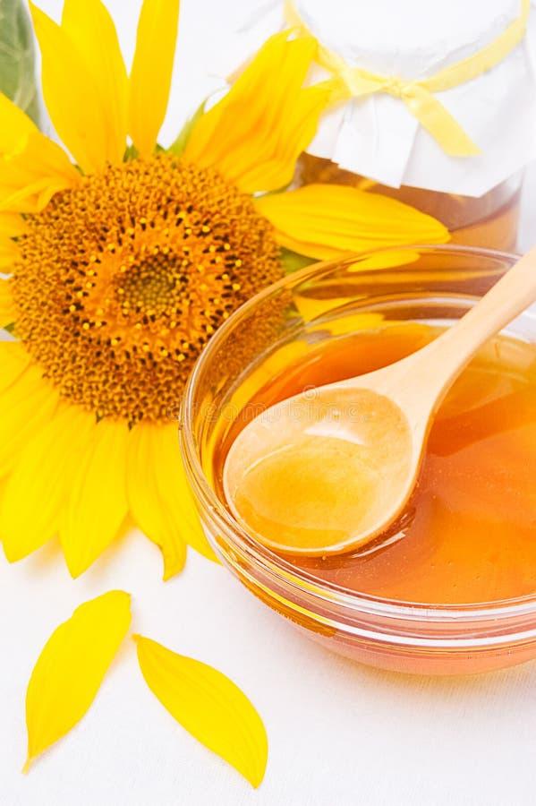 Honey and sunflower royalty free stock photo