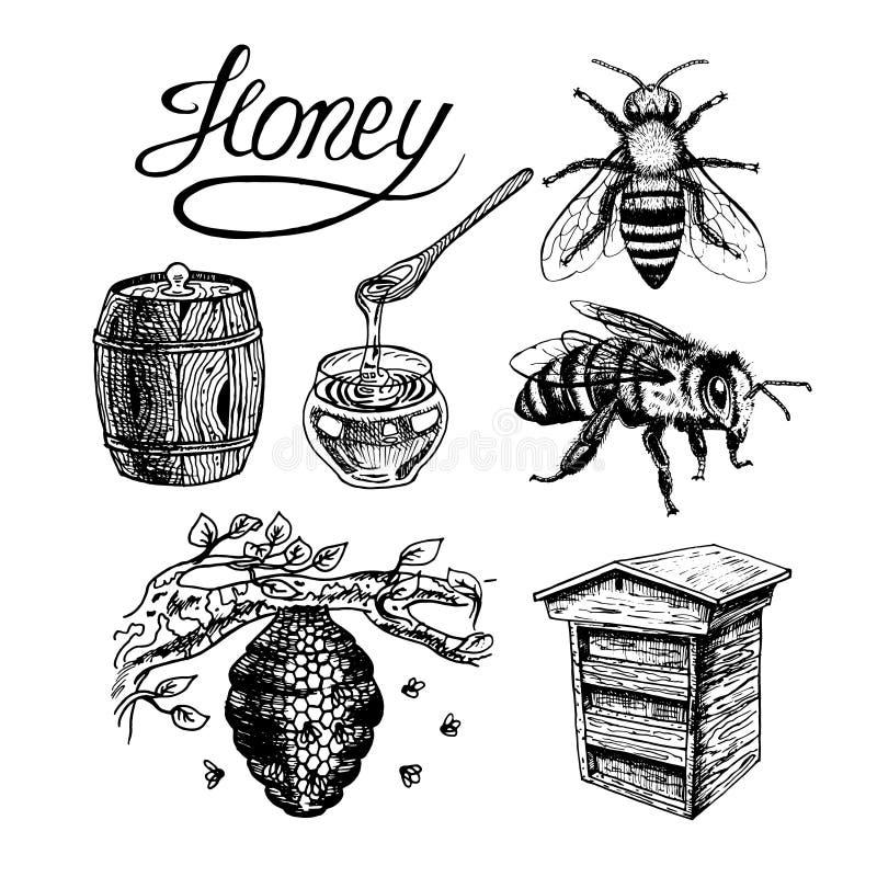 Honey vintage vector set royalty free illustration