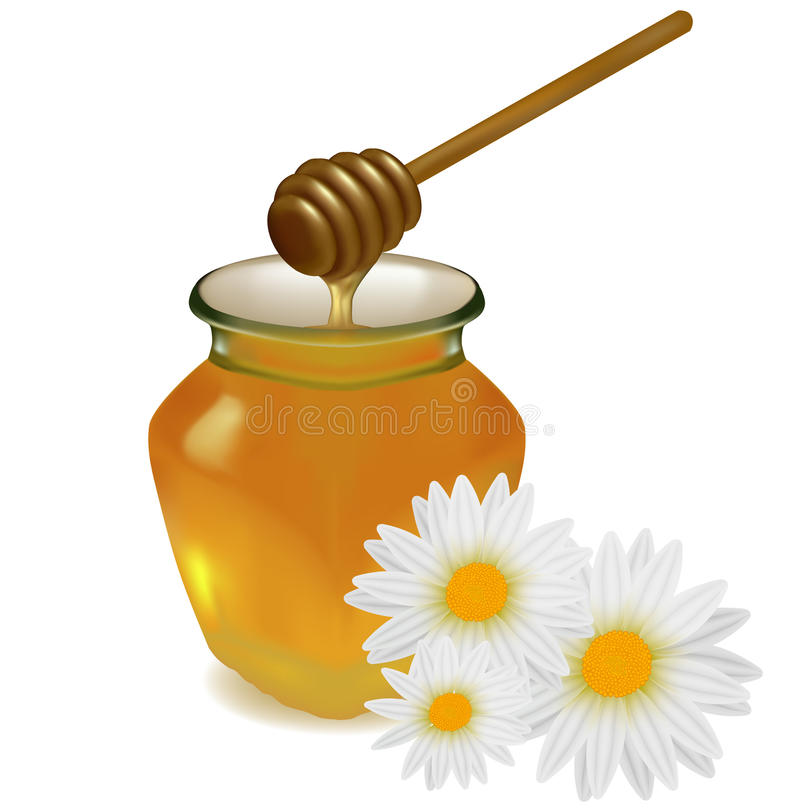 Download Honey With Wood Stick And Flowers. Stock Vector - Image: 17494050