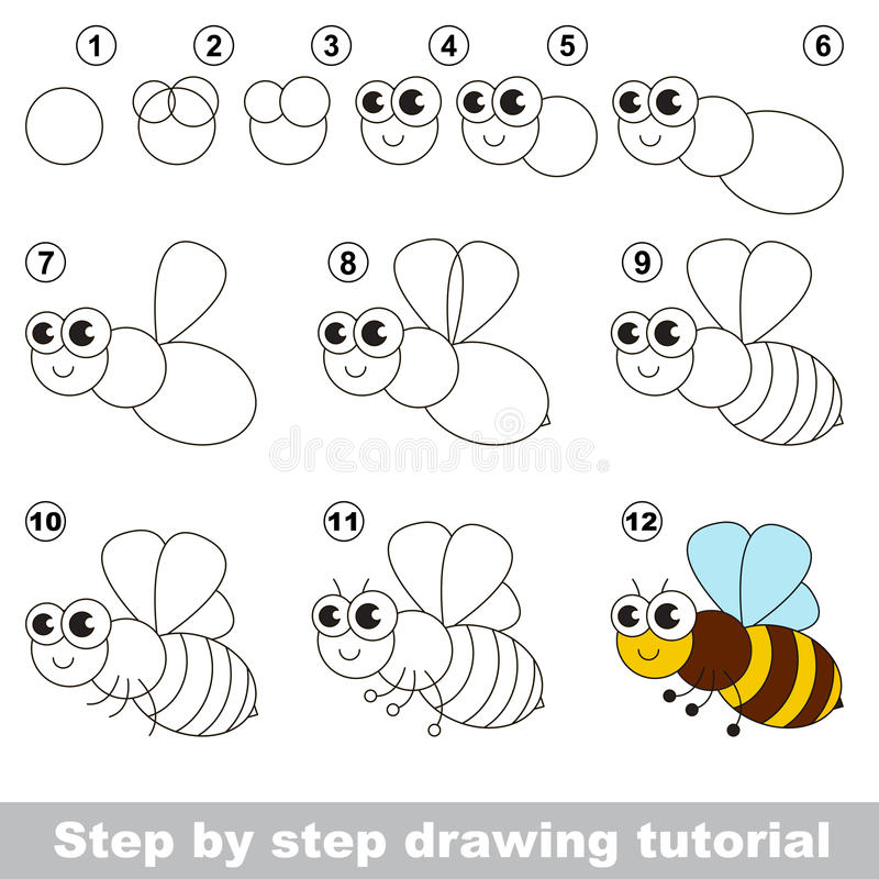 Download The Honeybee Drawing Tutorial Stock Vector