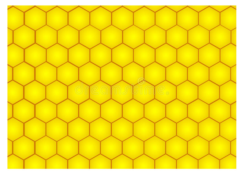 Honeycomb. Illustration of honeycomb. Honeycomb background vector illustration