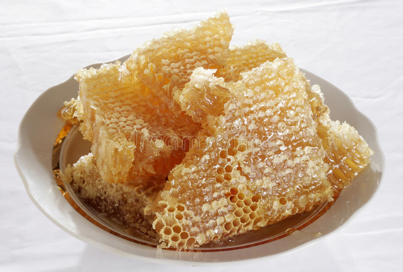 Download Honeycomb Royalty Free Stock Images - Image: 19778729
