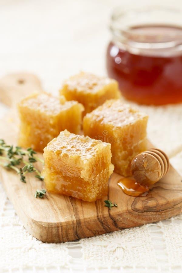 Honeycomb fotografia royalty free