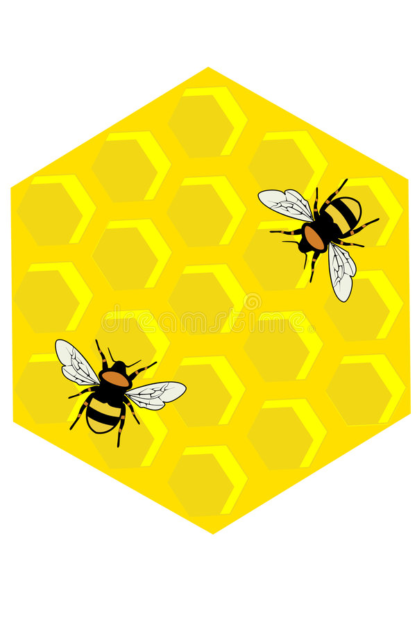 Free Honeycomb Stock Image - 8736021