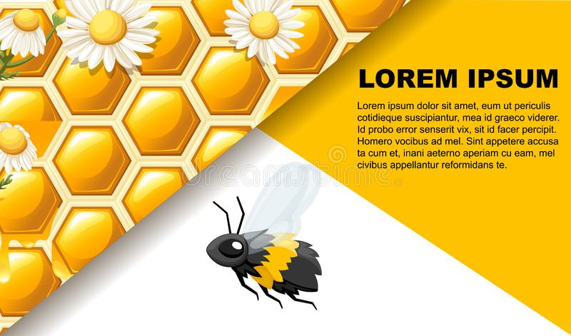 Honeycomb with bee and white white daisy. Web site page and mobile app design. Flat vector illustration on white background. Place. For text vector illustration