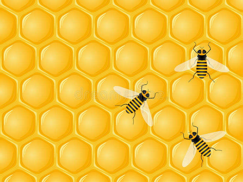 Honeycomb and bees royalty free illustration