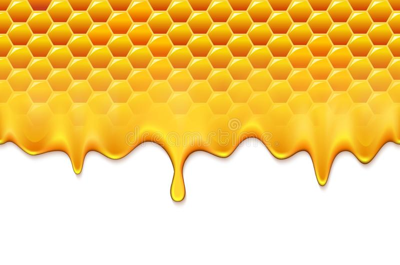 Honeycomb 9. Honey splash dripping from bee honeycomb. Natural fresh eco product royalty free illustration