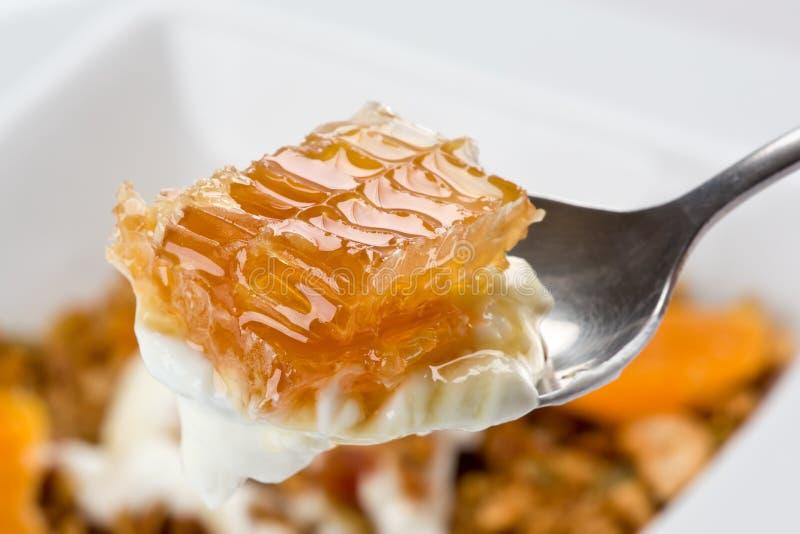 honeycomb jogurt obraz stock