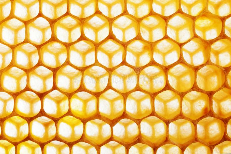 Honeycomb macro as a background. Beekeeping products. Apitherapy. royalty free stock photos