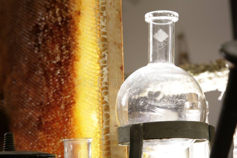 honeycomb naczynie szklane obraz stock