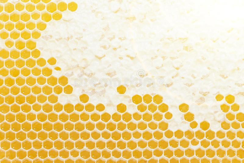 Honeycomb pattern. Hexagonal texture. Abstract pattern background. Honeycomb. Golden, background. Honeycomb pattern. Hexagonal texture. Abstract pattern royalty free stock image