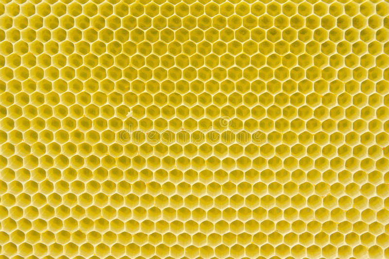 Honeycomb pattern. With yellow empty cells in daylight royalty free stock image