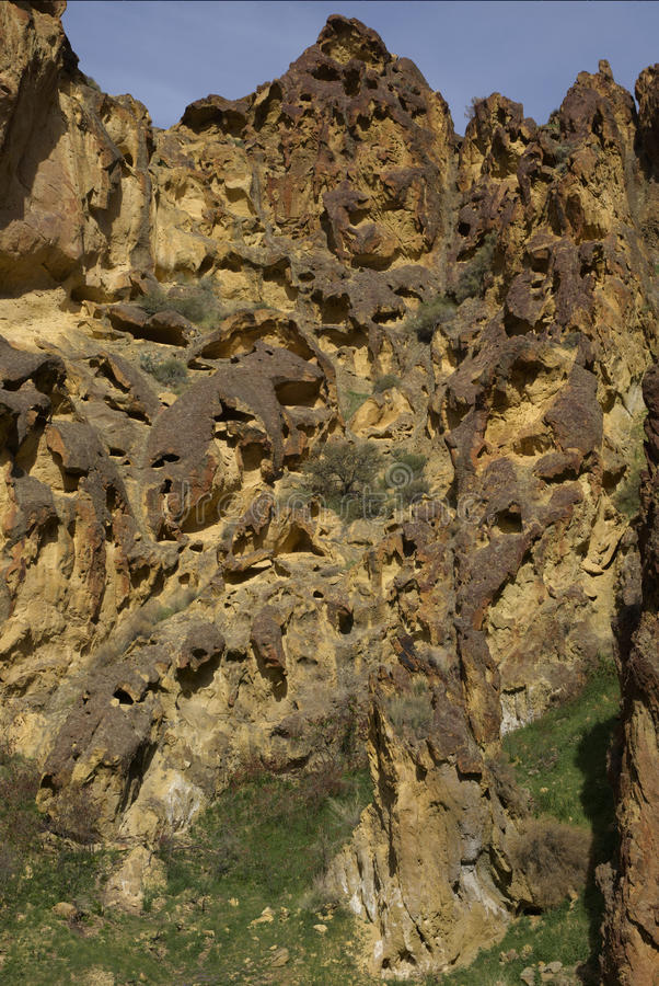Honeycomb Rock Formation in Leslie Gulch royalty free stock image