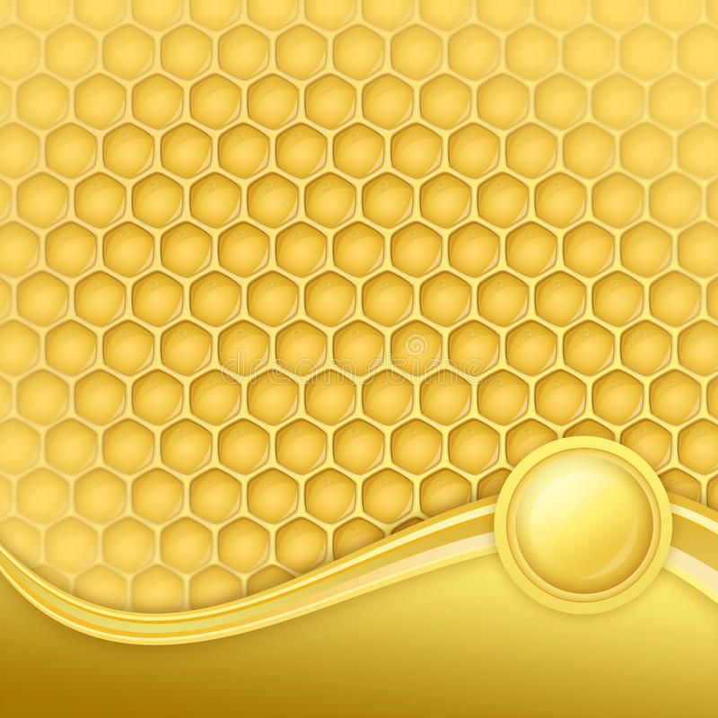 Honeycomb with wax. In a beautiful frame vector illustration