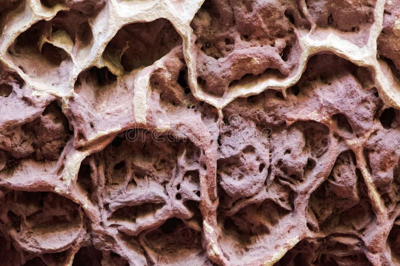 Honeycomb weathering in a natural sandstone and claystone wall stock image