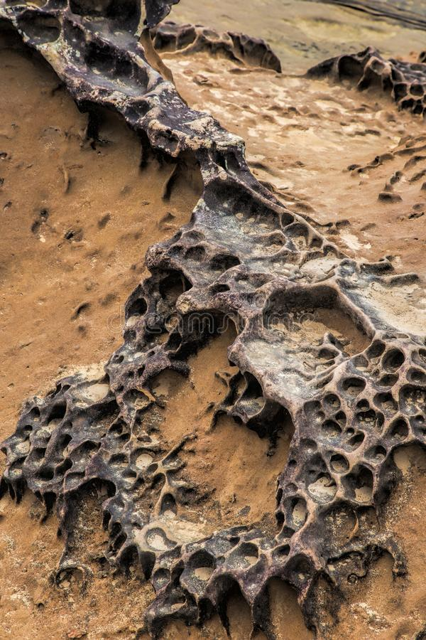 Honeycomb weathering patterns in the Yehliu Geopark, New Taipei, Taiwan, China royalty free stock images