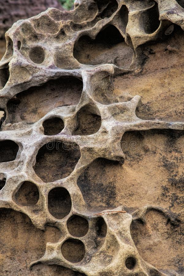 Honeycomb weathering patterns in the Yehliu Geopark, New Taipei, Taiwan, China stock image