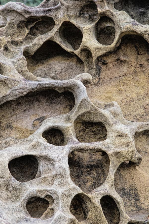 Honeycomb weathering patterns in the Yehliu Geopark, New Taipei, Taiwan, China royalty free stock image