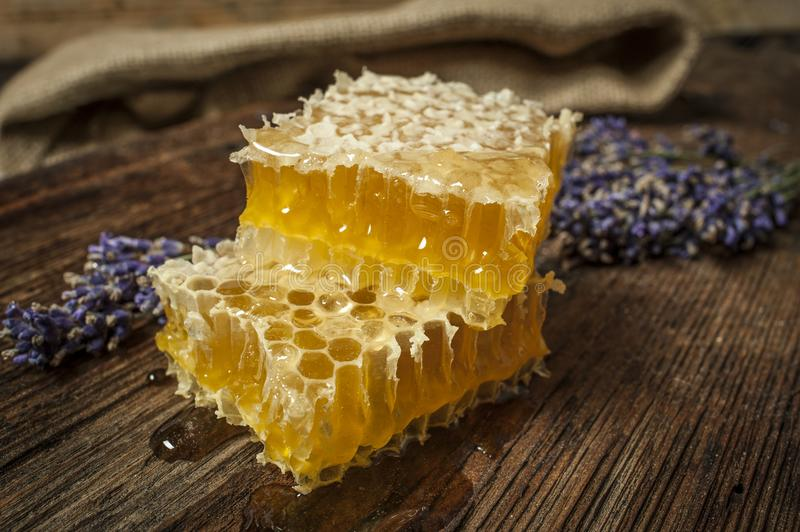 Fresh honey close up. Honeycomb on a wooden table close up royalty free stock photo