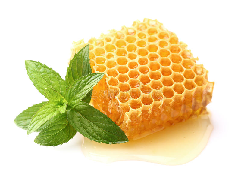 Honeycomb z mennicą zdjęcia royalty free