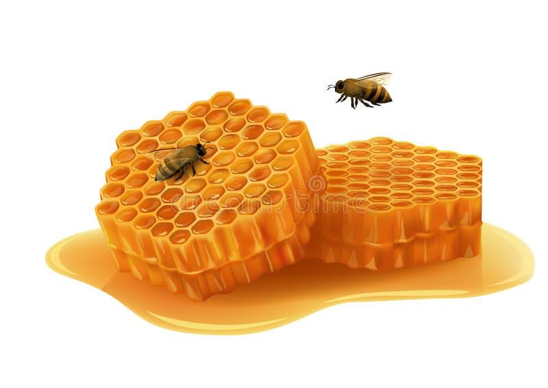 Honeycomb z pszczołami na białym tle royalty ilustracja