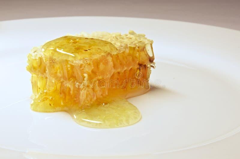 Honeycomb zamknięty up obrazy stock