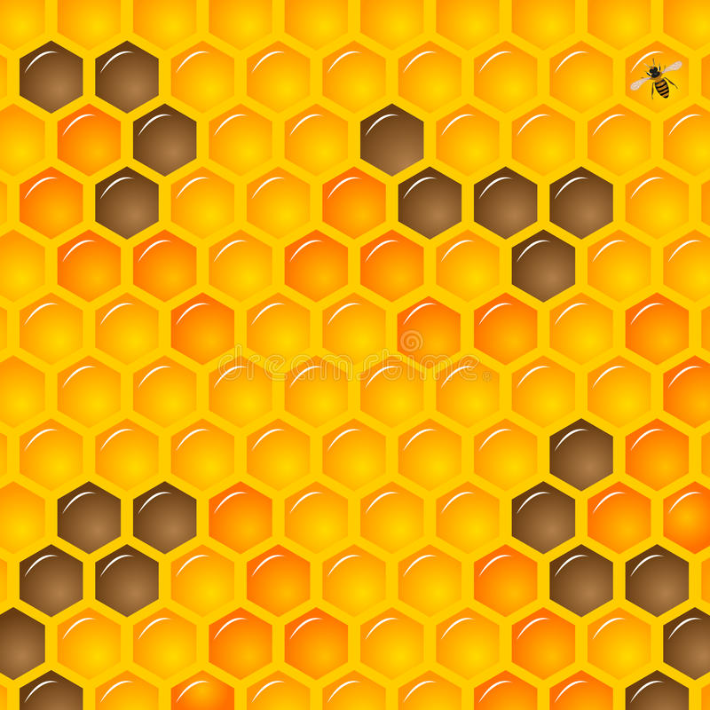 Honeycombs. Natural Background with Honeycombs and bee royalty free illustration